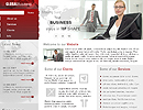 Global Business flash and html template