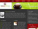 Natural Business flash and html template